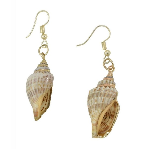 Earrings with natural  sea shells and plating