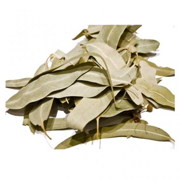 Eucalyptus Leaves 20gr