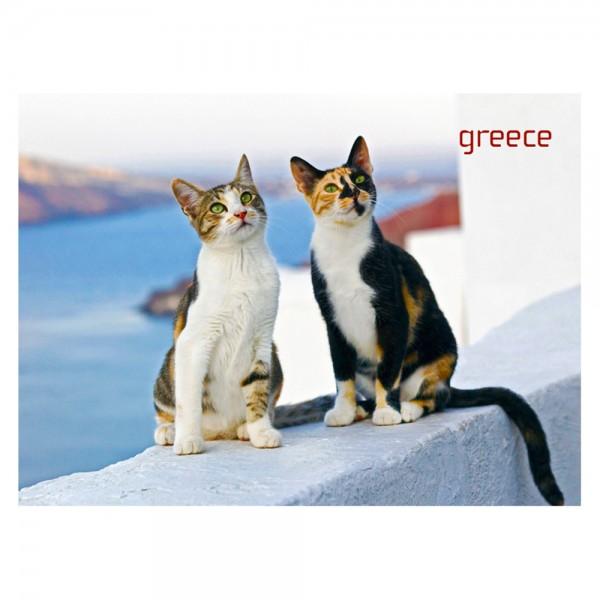 Fridge magnet Greek Cats